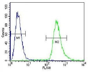 Flow Cytometry - Anti-GRP94 antibody (ab230650)