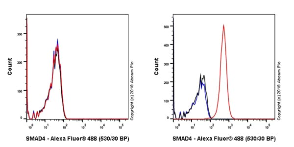 Flow Cytometry - Anti-Smad4 antibody [EPR22589-112] (ab230815)