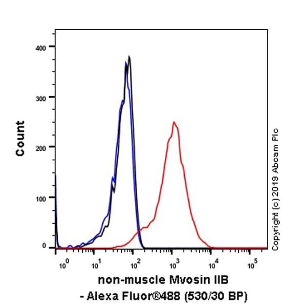 Flow Cytometry (Intracellular) - Anti-non-muscle Myosin IIB/MYH10 antibody [EPR22564-23] (ab230823)