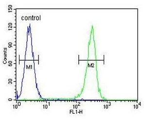Flow Cytometry - Anti-Werner's syndrome helicase WRN antibody (ab230851)