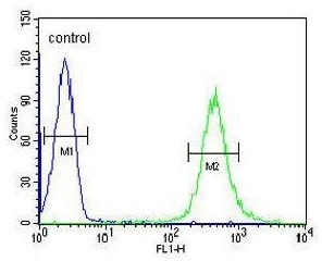 Flow Cytometry - Anti-HOXA3 antibody - C-terminal (ab230879)