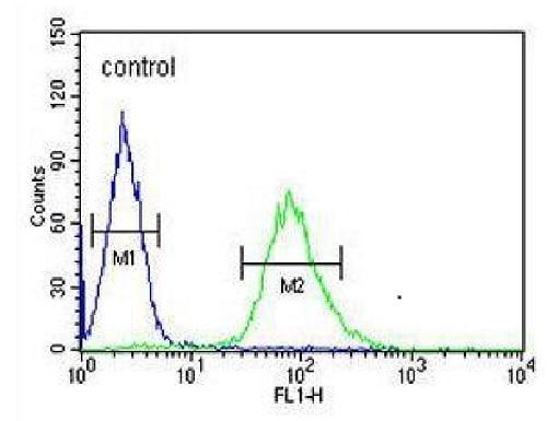 Flow Cytometry - Anti-ARHGAP17 antibody - N-terminal (ab230889)