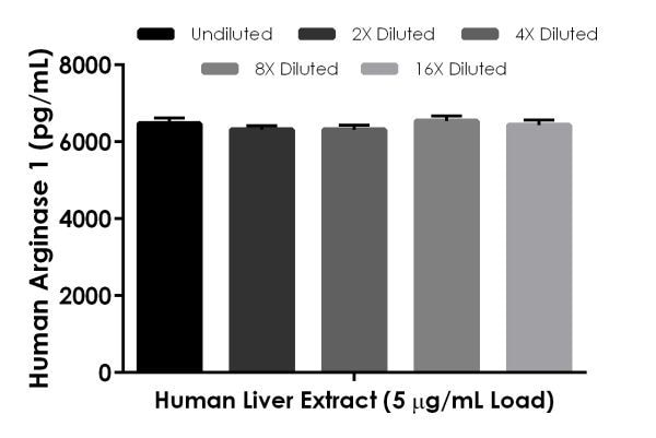 Interpolated concentrations of native Arginase 1 in human liver extract based on a 5 µg/mL extract load.