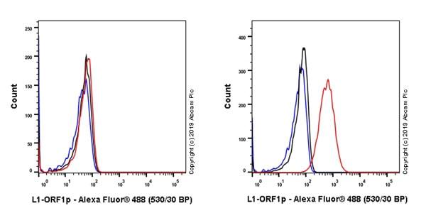 Flow Cytometry - Anti-LINE-1 ORF1p antibody [EPR22227-54] (ab230966)