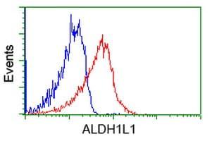 Flow Cytometry - Anti-ALDH1L1 antibody [2A6] (ab231018)