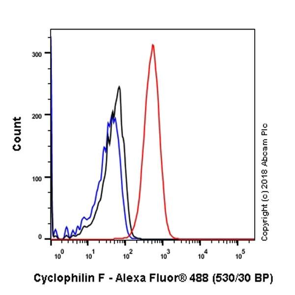 Flow Cytometry - Anti-Cyclophilin F antibody [EPR11311-121] (ab231155)