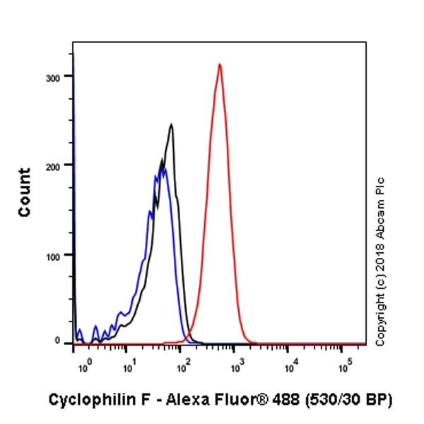 Flow Cytometry - Anti-Cyclophilin F antibody [EPR11311-121] - BSA and Azide free (ab231287)