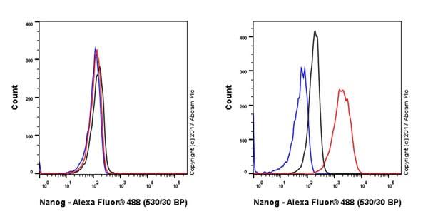 Flow Cytometry - Anti-Nanog antibody [EPR20694] - BSA and Azide free (ab231300)
