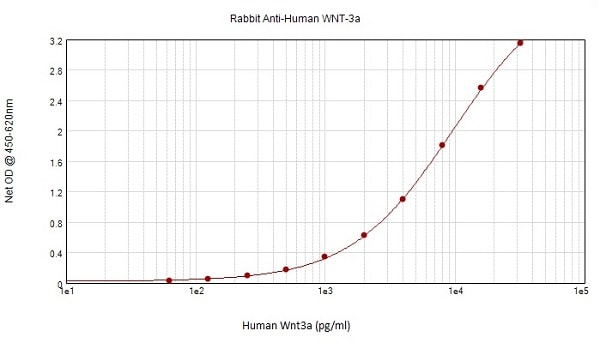 Sandwich ELISA - Anti-Wnt3a antibody (ab231365)