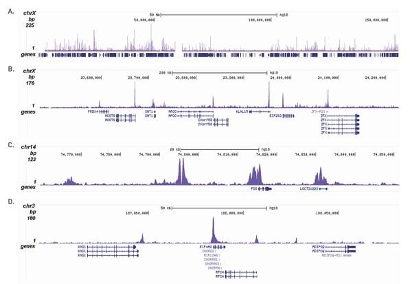 CHIPseq - Anti-Histone H3 (acetyl K18) antibody (ab231677)