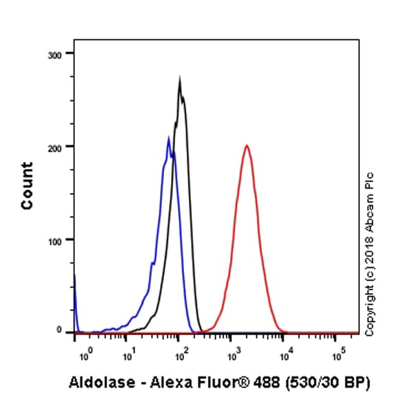 Flow Cytometry - Anti-Aldolase + Aldolase B + Aldolase C antibody [EPR9724(B)] - BSA and Azide free (ab231682)