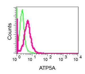 Flow Cytometry - Anti-ATP5A antibody [EPR13030(B)] - BSA and Azide free (ab231692)