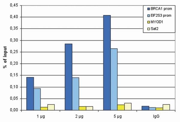 ChIP - Anti-SAP30 antibody (ab231804)