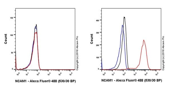 Flow Cytometry - Anti-NCAM1 antibody [EPR21827] - BSA and Azide free (ab231826)
