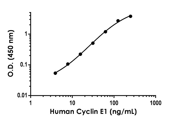 Example of human Cyclin E1 standard curve in 1X Cell Extraction Buffer PTR