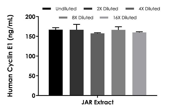 Interpolated concentrations of native Cyclin E1 in JAR cell extract based on a 1,000 µg/mL extract load