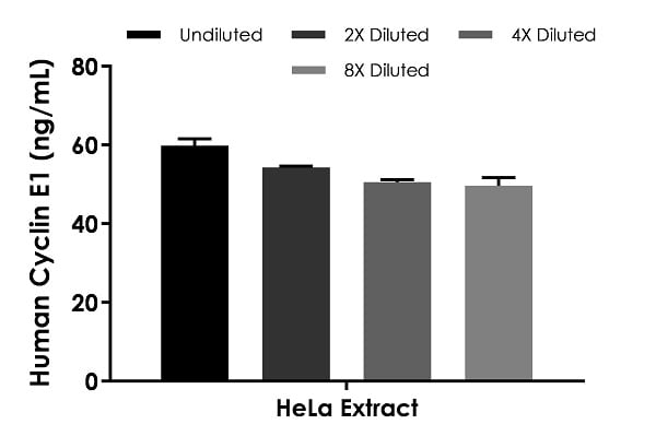 Interpolated concentrations of native Cyclin E1 in HeLa cell extract based on a 1,500 µg/mL extract load