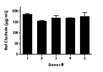 Serum from five individual healthy rat female donors was measured in duplicate.
