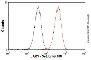 Flow Cytometry - Anti-JAK3 antibody [EP909Y] - BSA and Azide free (ab232005)