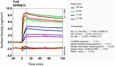 Other - Anti-TLS/FUS antibody [EPR5812] - BSA and Azide free (ab232065)