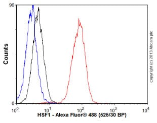 Flow Cytometry - Anti-HSF1 antibody [EP1710Y] - BSA and Azide free (ab232342)