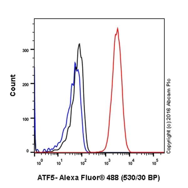 Flow Cytometry - Anti-ATF5 antibody [EPR18286] - BSA and Azide free (ab232351)