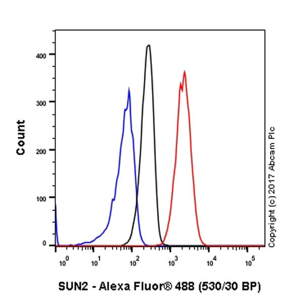 Flow Cytometry - Anti-SUN2 antibody [EPR6557] - BSA and Azide free (ab232365)