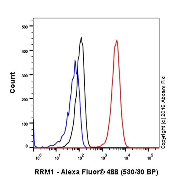 Flow Cytometry - Anti-RRM1 antibody [EPR8483] - BSA and Azide free (ab232382)