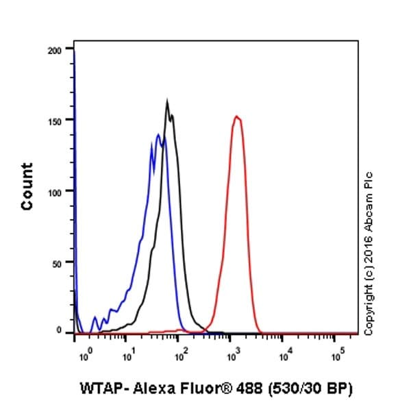 Flow Cytometry - Anti-WTAP antibody [EPR18744] - BSA and Azide free (ab232392)