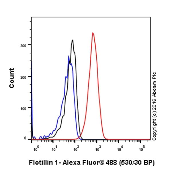 Flow Cytometry - Anti-Flotillin 1 antibody [EPR6041] - BSA and Azide free (ab232405)