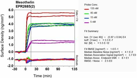 Other - Anti-Mesothelin antibody [EPR2685(2)] - BSA and Azide free (ab232411)