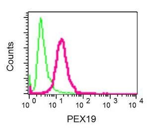 Flow Cytometry - Anti-PEX19 antibody [EPR9266(B)] - BSA and Azide free (ab232421)