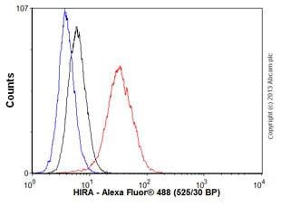 Flow Cytometry - Anti-HIRA/HIR antibody [EPR7416] - BSA and Azide free (ab232477)