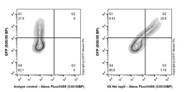Flow Cytometry - Anti-6X His tag® antibody [EPR20547] - BSA and Azide free (ab232492)