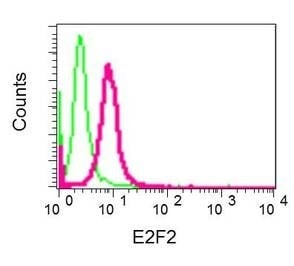 Flow Cytometry - Anti-E2F2 antibody [EPR8622] - BSA and Azide free (ab232531)