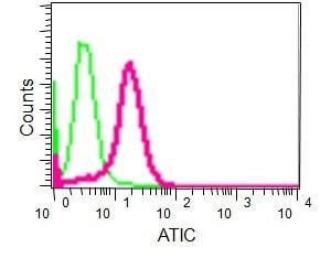 Flow Cytometry - Anti-ATIC antibody [EPR13243-53] - BSA and Azide free (ab232532)