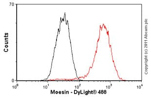 Flow Cytometry - Anti-Moesin antibody [EP1863Y] - BSA and Azide free (ab232580)