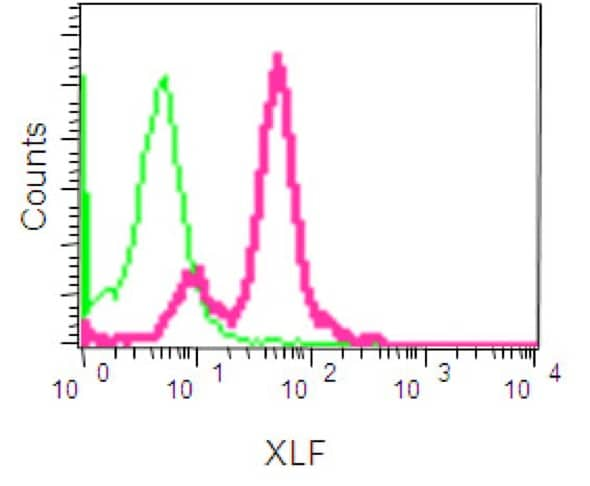Flow Cytometry - Anti-XLF antibody [EPR15882-36] - BSA and Azide free (ab232587)