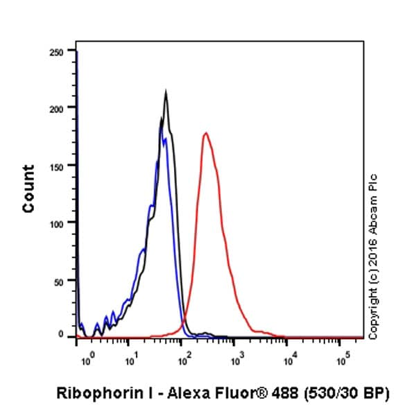 Flow Cytometry - Anti-Ribophorin I antibody [EPR17043(B)] - BSA and Azide free (ab232599)