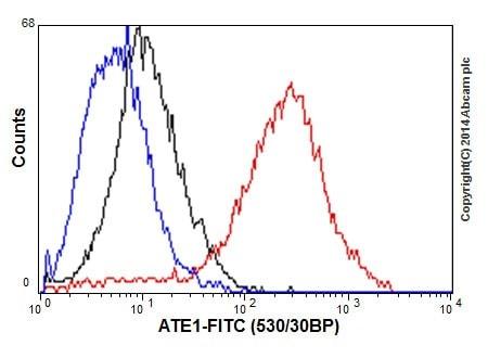 Flow Cytometry - Anti-ATE1 antibody [EPR13667(2)] - BSA and Azide free (ab232619)