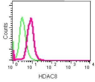 Flow Cytometry - Anti-HDAC8 antibody [EPR10338(2)] - BSA and Azide free (ab232643)