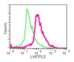 Flow Cytometry - Anti-LHFPL5 antibody [EPR16285] - BSA and Azide free (ab232650)
