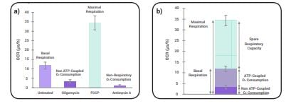 Full characterization of mitochondrial function using the Mitochondrial Stress Test Complete Assay.