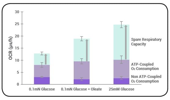 Basal Respiration and Maximal Respiration in HepG2 cells measured in different nutrient conditions.