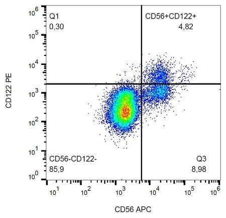 Flow Cytometry - PE Anti-IL2 Receptor beta/p75 antibody [TU27] (ab232919)