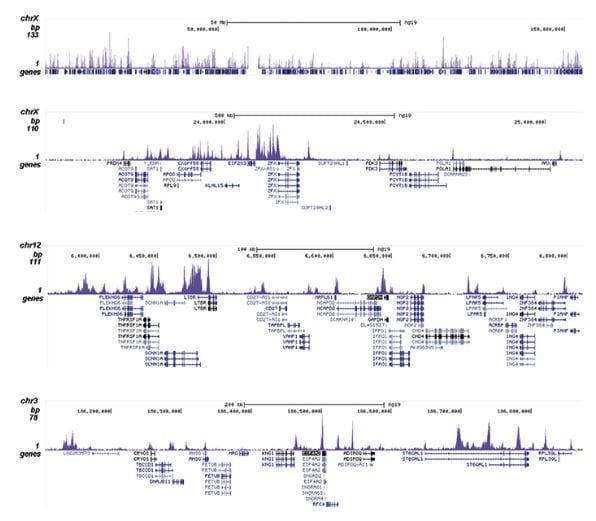 CHIPseq - Anti-Histone H3 (acetyl K4) antibody (ab232931)