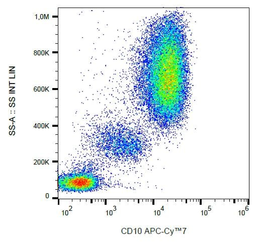 Flow Cytometry - Anti-CD10 antibody [MEM-78] (Allophycocyanin/Cy7 ®) (ab233253)