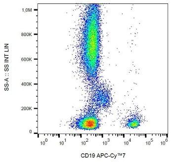 Flow Cytometry - Anti-CD19 antibody [LT19] (Allophycocyanin/Cy7 ®) (ab233279)