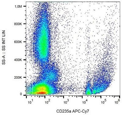 Flow Cytometry - APC/Cy7® Anti-Glycophorin A antibody [JC159] (ab233456)