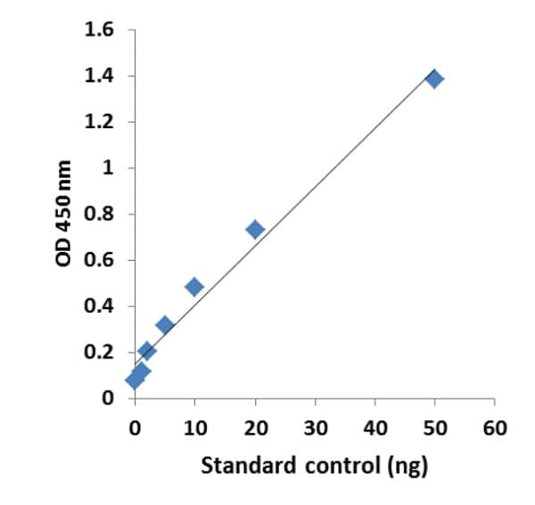 Example Standard Curve